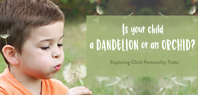 Child Blowing Whisps of Dandelion