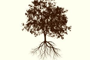 tree silhouette with roots on cream colored background