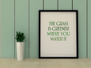 """a black framed quote which says, """"The Grass is Greener Where You Water It"""""""