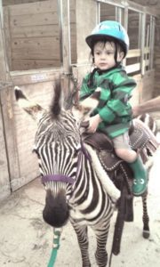 a toddler in a raincoat and rain boots riding on a saddled zebra