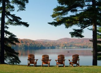 four Adirondack chairs lined up between two trees at a lakeside