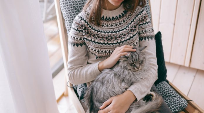 a woman sitting on a chair with a cat on her lap