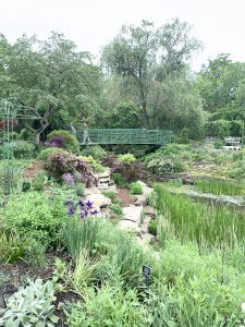 a bridge over a gorgeous green space with foliage in bloom at the Overland Park Arboretum