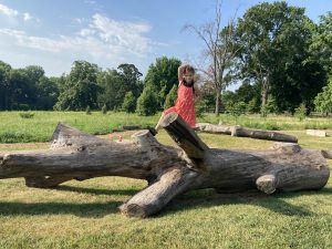 a girl climbing on a giant log