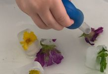 flowers frozen into ice cubes, and a child's hand with a water dropper, trying to melt the ice as a science experiment