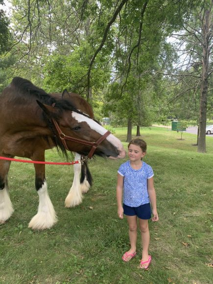 a young girl gets a kiss from a Clydesdale at Hanging with Heroes, a STL Mom event